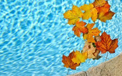 Como cuidar da Piscina no Outono?